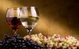 Клуб винолюбов